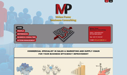 MP Business Consulting